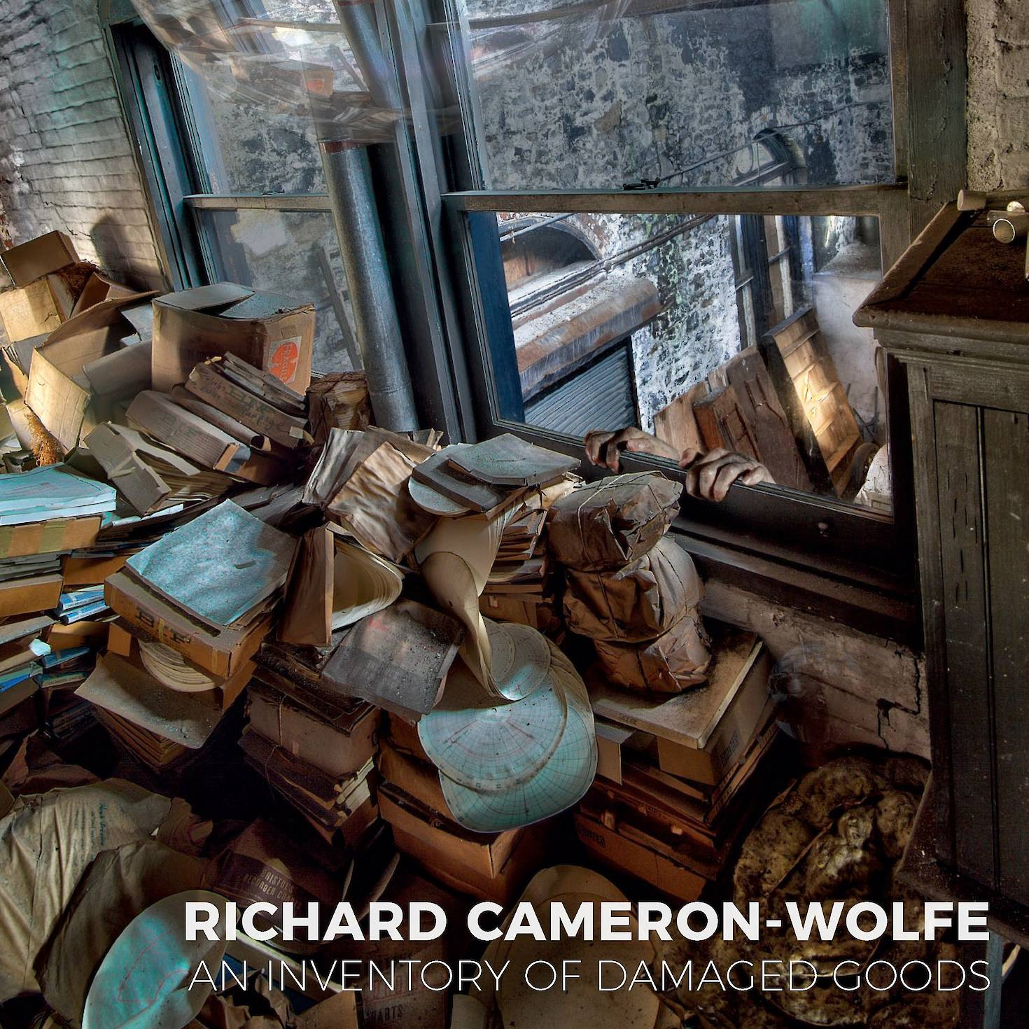 Richard Cameron-Wolfe: An Inventory of Damaged Goods cover